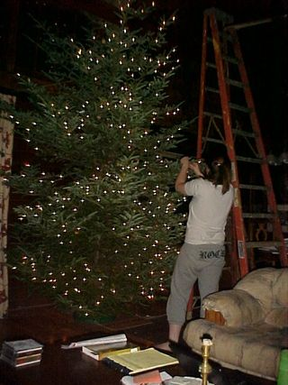 Treeinprocess2